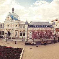 Kálmán Attila - Erzsébet tér