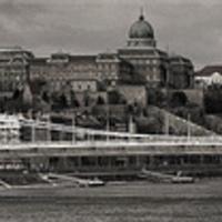 Monos Gábor - Erzsébet híd