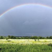 Rainbow - Phatom69ers