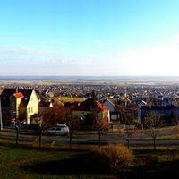 G. Tamás - Pure view