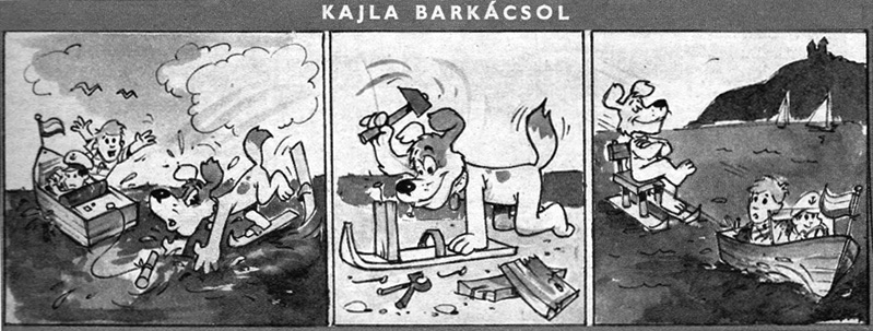Kajla_barkacsol_Pajtas68-33.jpg