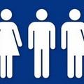A genderkutatás betiltásáról Magyarországon