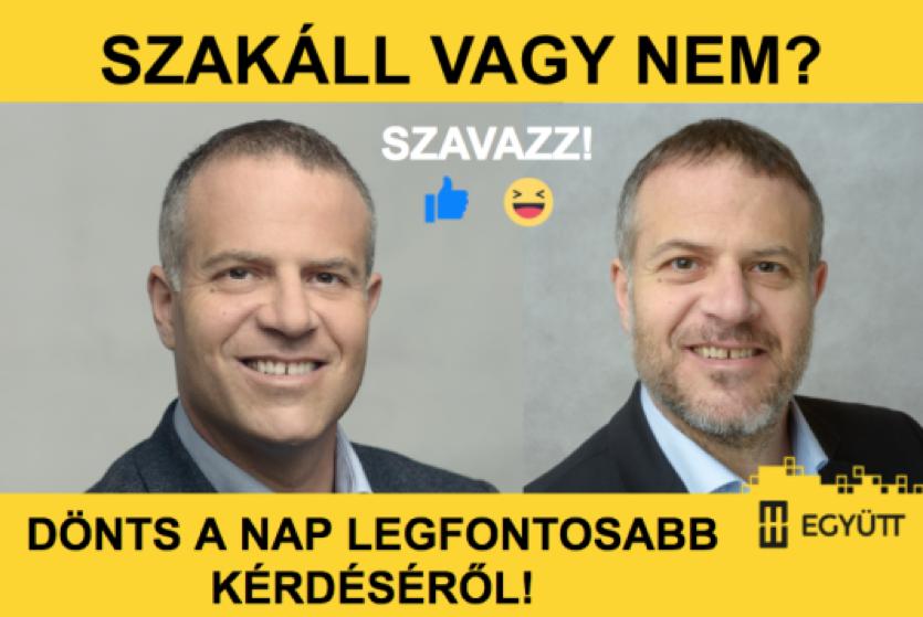 juhaszp.png