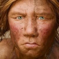 Megtalálták a legősibb lengyelországi neandervölgyi embermaradványokat