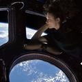 Kísérletek az ISS-en, avagy mi történik a saláta-palánták szomszédságában?
