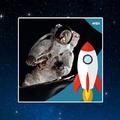 Évadnyitó, egy Apollo-űrhajós vendégeskedésével