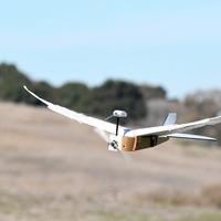 Először fejlesztettek tollas szárnnyal repülő robotot