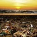 A szárazföldi műanyagszennyezés hatalmas részét teszik ki a műanyag textilszálak