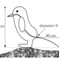 A pingvinkakitól a vombatkockákig