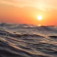 Nem egyszerre zajlott le a földtörténet legsúlyosabb kihalása a szárazföldön és az óceánban