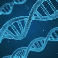A hosszú élet az eddig véltnél kevésbé írható a géneknek számlájára