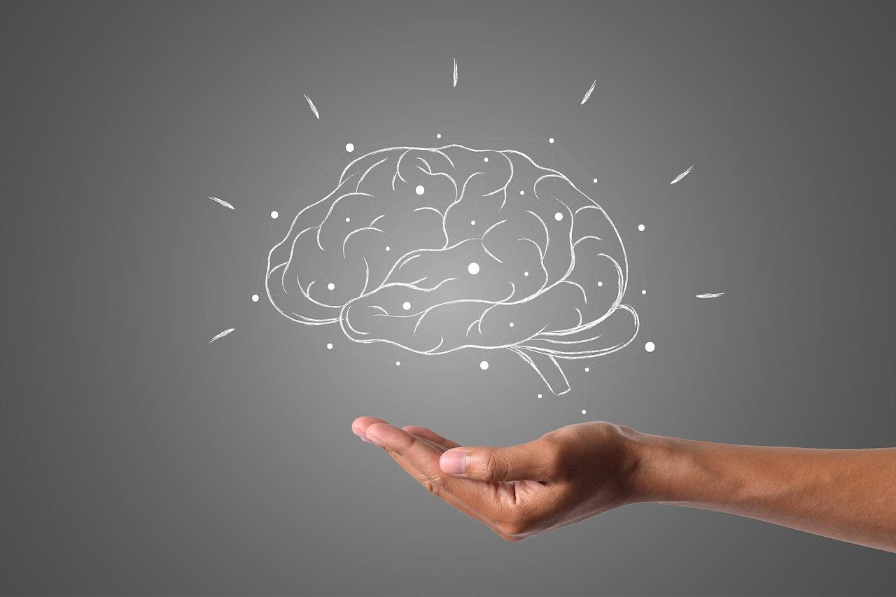 brain-4961452_1280.jpg