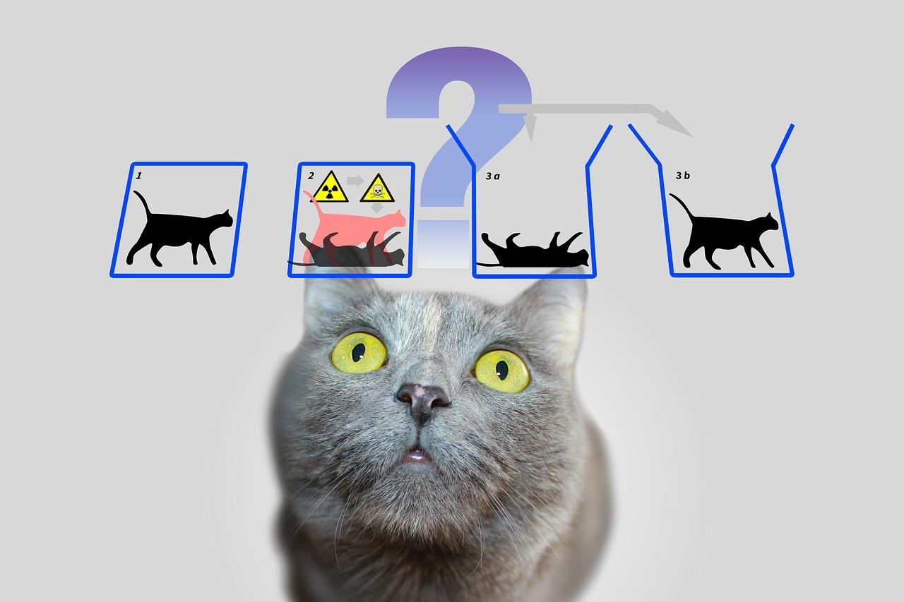 physics-3864569_1280.jpg