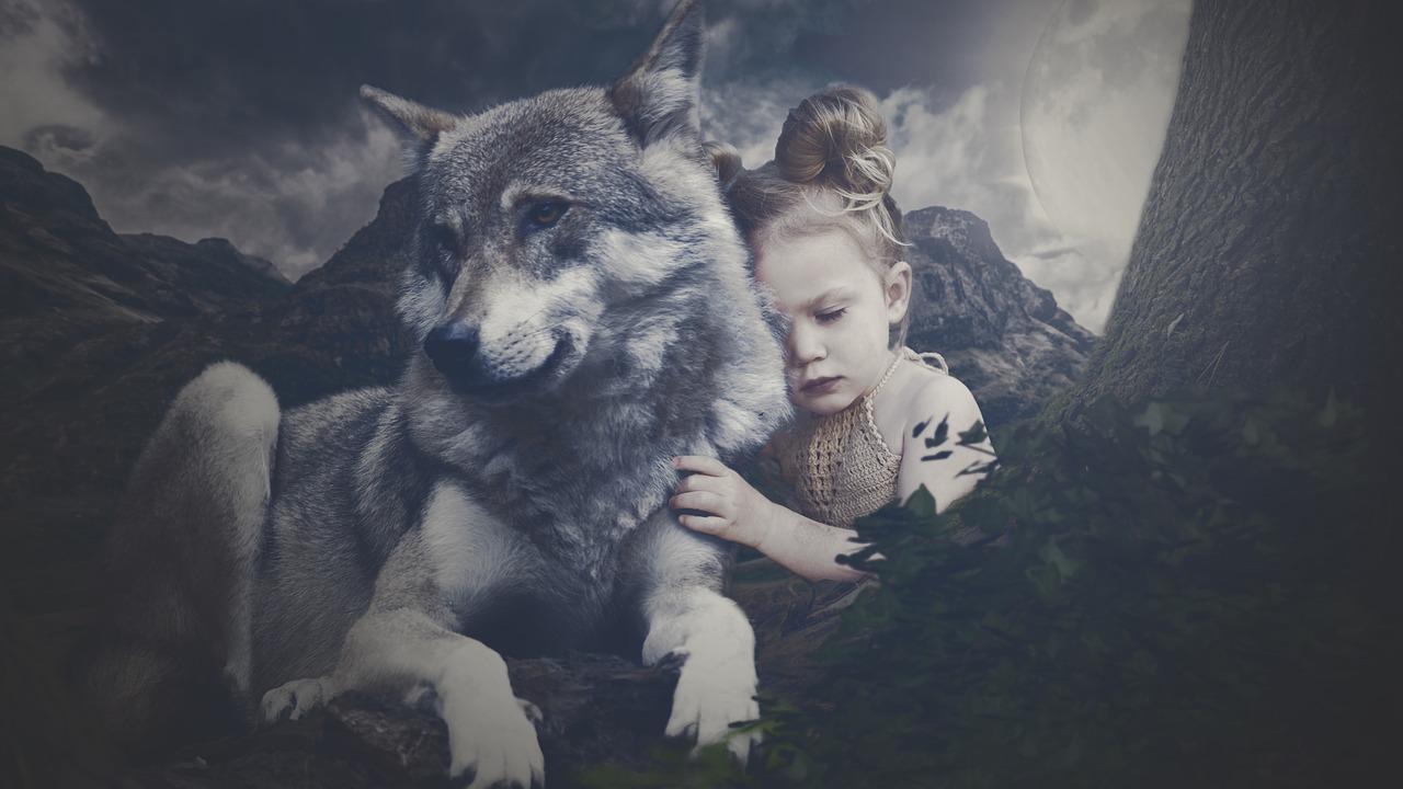 wolf-3581809_1280.jpg