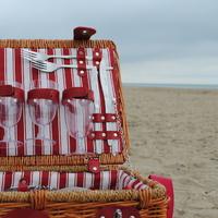 Viking piknik