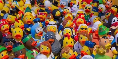 gumikacsa_480_toy-ducks-535335_1920.jpg