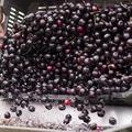 Gyümölcs a főzdében