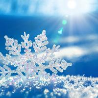 Készítsük fel a szervezetünket a télre! Erősítsük az immunrendszerünket!