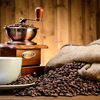 Kávé szenvedéllyel I. rész