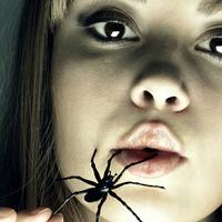 A pókméreg jobb, mint a Viagra?