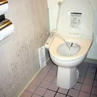WC akták