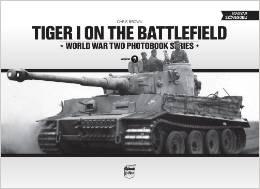 tiger 7.jpg