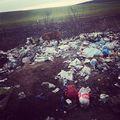 #magyarország2019 #hungarianreality #környezetbarát #allatvedelem