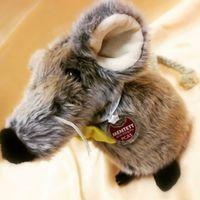 Ne támogasd az állatkísérleteket végző cégek szörnyű kínzásait! #becrueltyfree  https://www.facebook.com/allatkiserlet.mentes/
