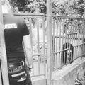 Akkor is dolgozunk, amikor nem látható..... #rescuedogs