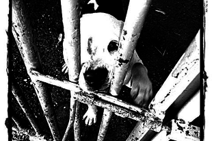 Eljött az összefogás ideje!- Szigorúbb büntetéseket az állakínzóknak!