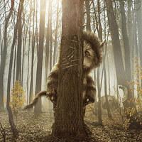 Ahol a vadak várnak (Where the Wild Things Are) magyar feliratos előzetes HD-ban!