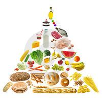 A táplálékpiramis