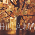 Itt van az ősz, itt van újra #1 | Beauty haul & Soul |