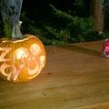 * Halloween a győri állatkertben *