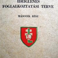 70 éve bontottak zászlót a leányleventék Pécsett (1. rész)