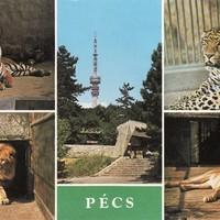 Mi újság az Állatkertben? - 1988. március