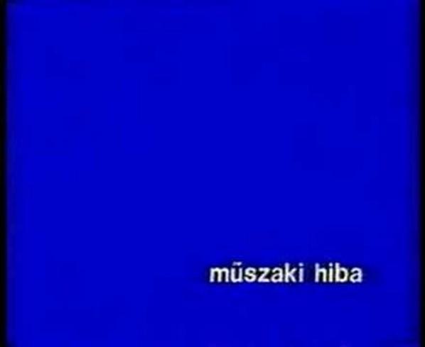 muszaki_hiba_598.jpg