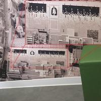 Kinek a DNS-ét rejti a belvárosi Kormányablak falán lévő kép?