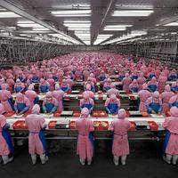 Kínai gyárak - ahogy még nem láttad