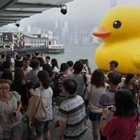 A kacsa elhagyta a Hongkongot...