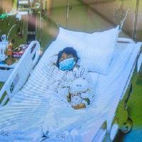 Pekinget is elérte a H7N9 madárinfluenza