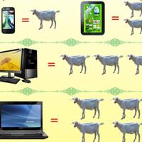 Okostelefon = egy birka. Laptop = négy birka.