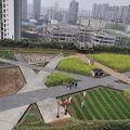 Gyárépület tetején működik mini mintafarm Kínában