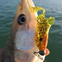 Felemás horgásznap
