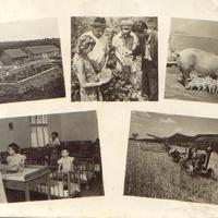 Üröm 1945 utáni képeslapokon