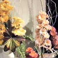 Virágkiállítás anno...