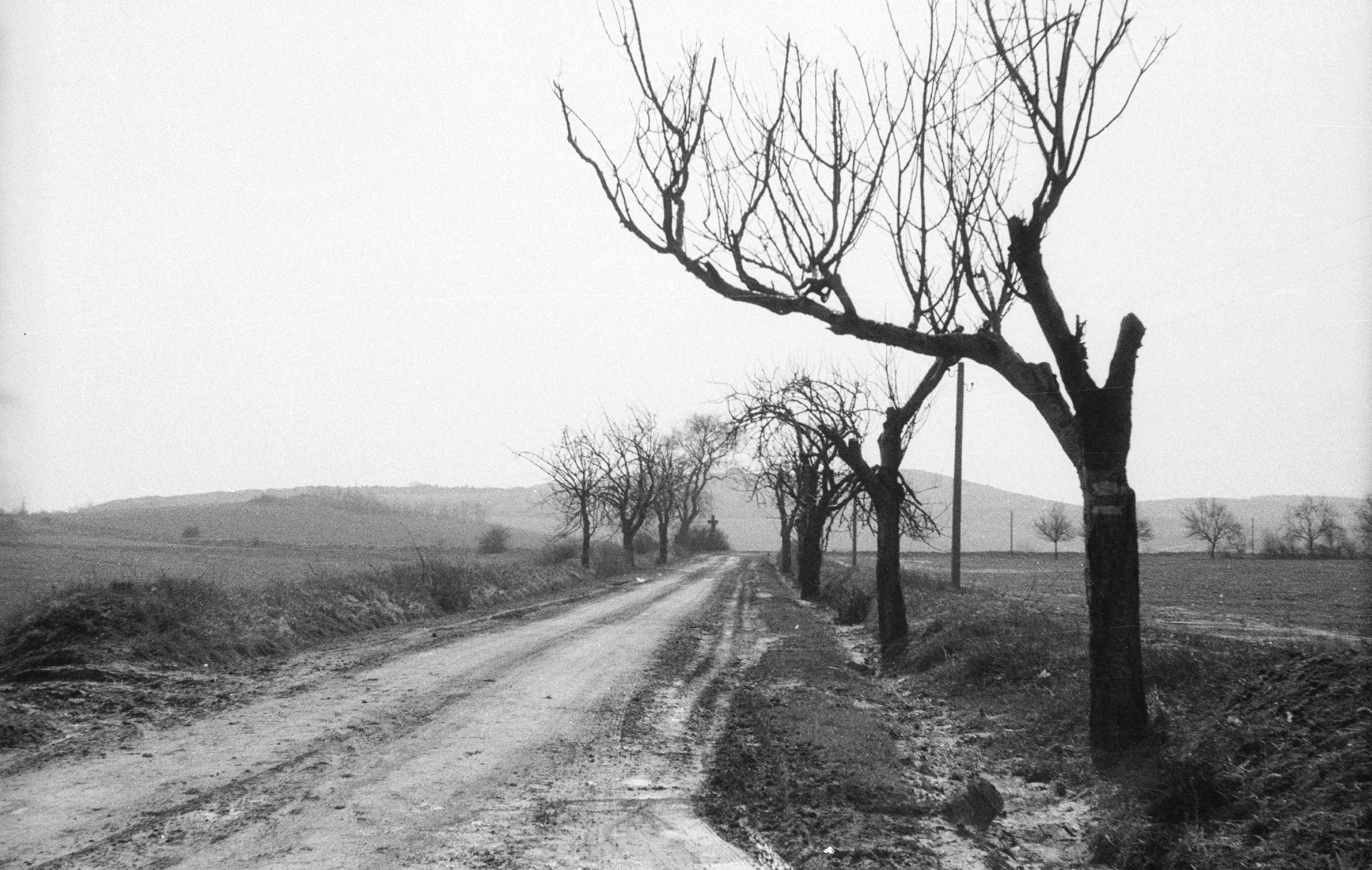 budakalaszi_ut_1965_orig_meszaros_zoltan_1.jpg