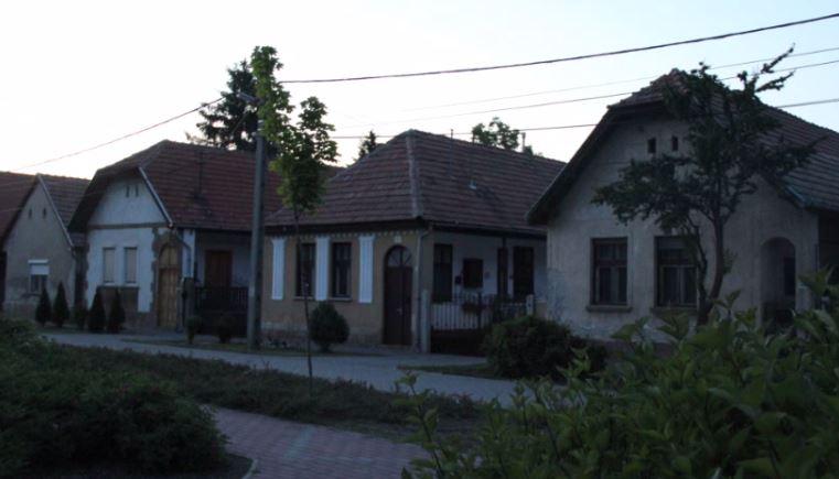 fo_utca_2012_6.JPG