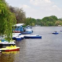 Bukaresti séták - zöld a városban