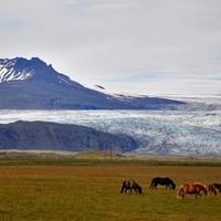 Gleccsertúra a Breiðamerkurjökull gleccseren, Jökulsárlón és Fjallsárlón